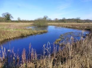 Perfect Pond (W17) (2)